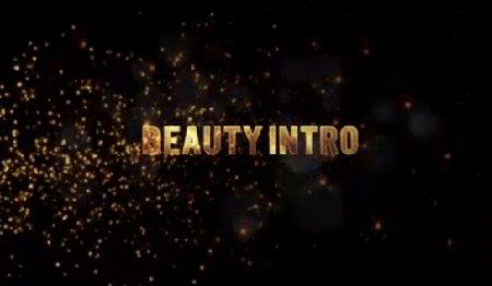 دانلود پروژه زیبای لگوی افتر افکت-Beauty Intro