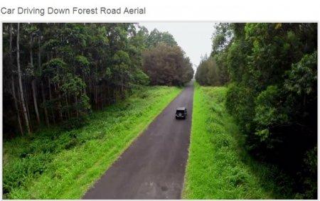 دانلود فوتیج هوایی حرکت ماشین در جنگل زیبا